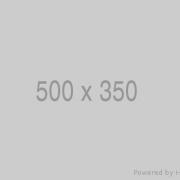 500x350